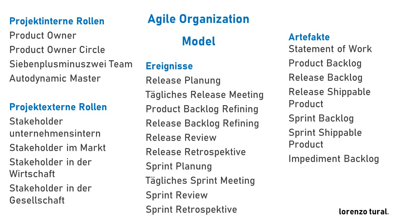 agile project organisation model